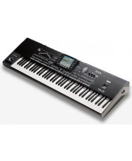 Workstation Interactivo Korg PA3X Pro 61