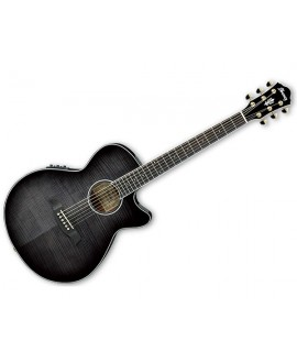 Guitarra Acústica Ibanez AEG24II-TGB