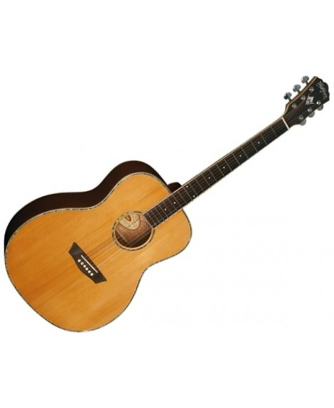 Guitarra Acústica Washburn WG-26S